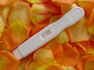 teste de gravidez de caneta com flores